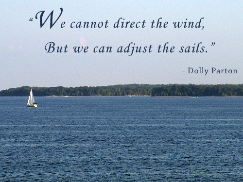 We-cannot-direct-the-wind-but-we-can-adjust-the-sails